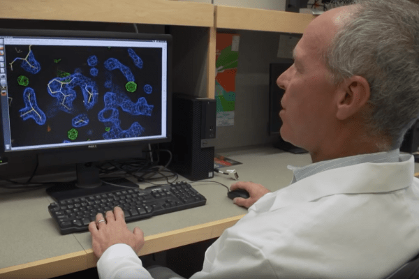 Researcher David Ostrov looks at a computer monitor that shows a research model